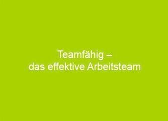 Teamfähig - das effektive Arbeitsteam - Salzburg