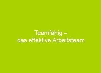 Teamfähig - das effektive Arbeitsteam - Linz