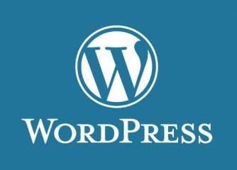 Wordpress - für Anfänger und Fortgeschrittenere (in 8 Stunden zur eigenen Homepage)